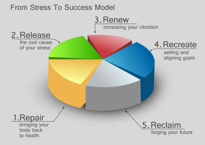 Stress To Success Model