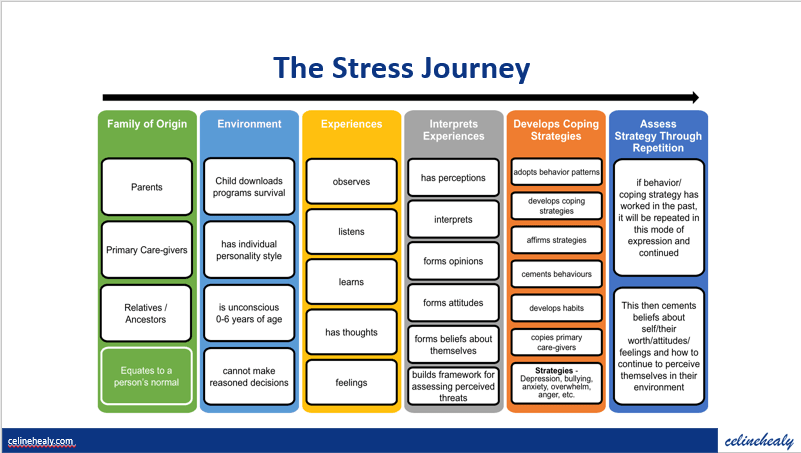 Your Stress Journey
