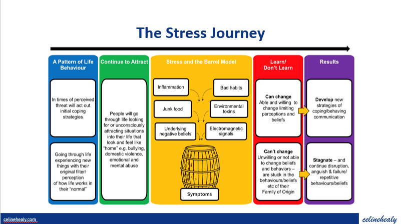 Your Stress Journey and Stress Barrel