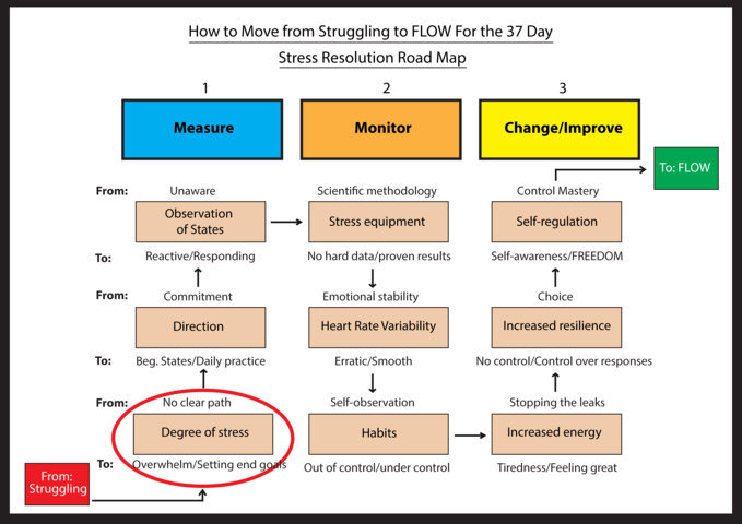 Stress Resolution Road Map – wellnessthatworks.com.au